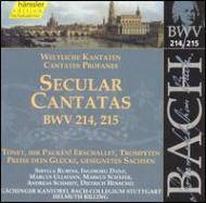 バッハ(1685-1750)/Cantatas.214 215: Rilling / Stuttgart Bach Collegium Ensemble