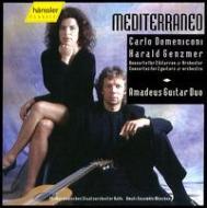 Concerto For 2 Guitars / Concerto Mediterraneo: Piollet / Halle.po