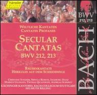 バッハ(1685-1750)/Cantatas.212 213: Rilling / Stuttgart Bach Collegium Ensemble