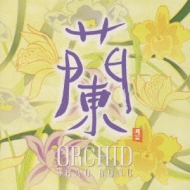 蘭 Orchid中国琵琶