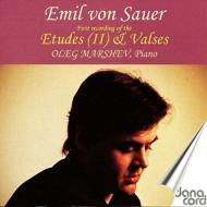 Piano Works Vol.2-etudes De Concert Vol.2: Marshev(P)