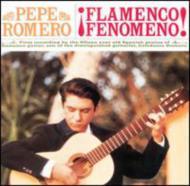 Flamenco Fenomeno