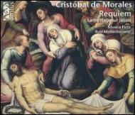 Requiem, Etc: Mallavibarena / Musica Ficta