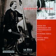 コントラバスと弦楽五重奏による作品集 文屋充徳、ムジカ・ヴァリア