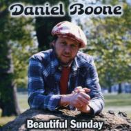 Beautiful Sunday -Greatest Hits