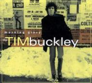 Morning Glory -Tim Buckley Anthology (2CD)