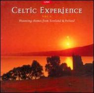 Celtic Experience Vol.3
