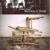 Asides From Buffalo Tom (1988to 1999)