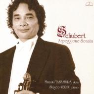 Arpeggione Sonata / Viola Sonata: 店村眞積(Va)練木繁夫(P)