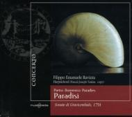 Harpsichord Sonatas Vol.2: Ravizza(Cemb)