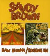 Raw Sienna / Looking In