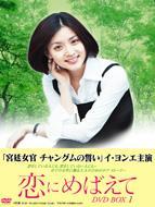 恋にめばえて DVD BOX1
