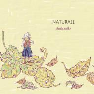 『Naturale(ナトゥラーレ)』 濱田芳通(cor)アントネッロ