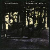 Wishing On The Moon