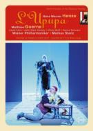 喜歌劇『ヤツガシラと息子の愛の勝利』全曲 シュテンツ&VPO、ゲルネ、エインズリー、他