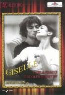 『ジゼル』 ラヴロフスキー振付、ローマ歌劇場バレエ、フラッチ、ヌレエフ、他(1980)