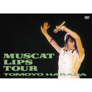 MUSCAT LIPS TOUR