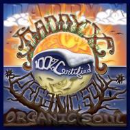 HMV&BOOKS onlineDaddy X/Organic Soul