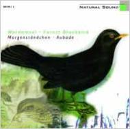Natural Sound -Forest Blackbird