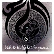 White Buffalo Turquoise
