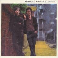 サボテンの花 〜grown up〜