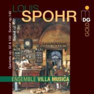 ピアノ五重奏曲、String Sextet、Septet Ensemble Villa Musica