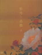 牡丹と薔薇 DVD BOX 下