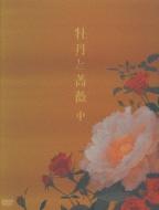 牡丹と薔薇 DVD BOX 中