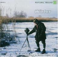 Natural Sound -Winter Am Bodensee