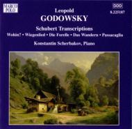 <ピアノ作品全集第6集:シューベルト編曲集、編曲とパラフレーズ> シチェルバコフ