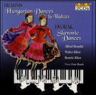 Hungarian Dances / Slavonic Dances: Brendel Klien +brahms: Waltzes: W & B.klien