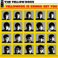 Yellowdog Is Gonna Get You