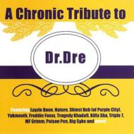 Chronic Tribute To Dr.Dre