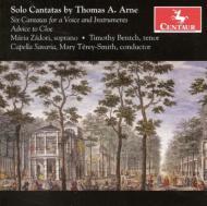 Solo Cantatas: Terey-smith / Capella Savaria Zadori(S)Bentch(T)