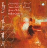 Piano Quintet: Nepomuk Fortepiano Quintet +dussek, Onslow
