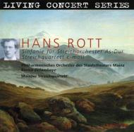 弦楽オーケストラのための交響曲、他 デラムボイ&マインツ国立歌劇場フィル