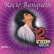 12 Grandes Exitos: Vol.1 (Ltd