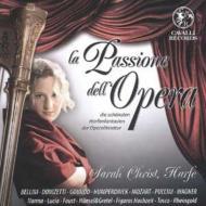 Harp Classical/La Passione Dell Opera: S.christ(Hp)