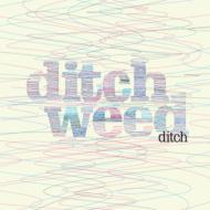 Ditch Weed