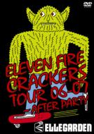 ELEVEN FIRE CRACKERS TOUR 06-07 〜AFTER PARTY