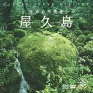 屋久島: 世界自然遺産