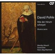 Musica Sacra: Mauch(S)Erler(A)Mammel(T)L'arpa Festante
