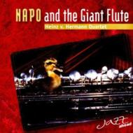 Napo And The Giant Flute (Jazz Ahead Quartet)