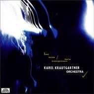 Jazz Kolem Karla Krautgartnera