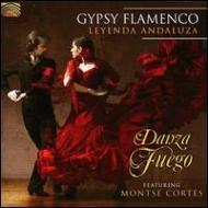 Gypsy Flamenco: Leyenda Andaluza