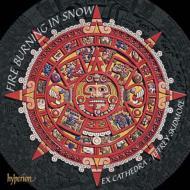 『雪の中で燃える炎−アラウホ作品集』 スキッドモア&エクス・カシドラ