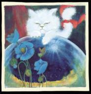 佐井好子LIVE 1976/79