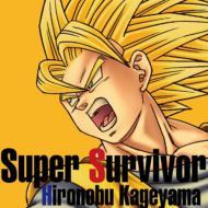 PS2・Wii用ソフト『ドラゴンボールZ〜スパーキング!メテオ』::Super Survivor
