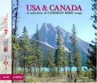 Usa & Canada: Selection Of Common Birds Songs