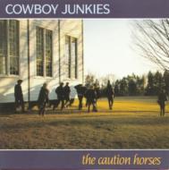 Caution Horse